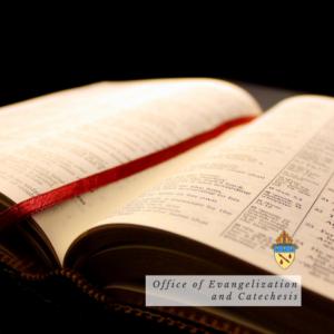 The Catholic Scriptures
